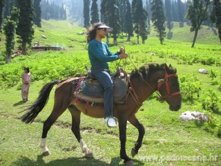 Horse ride in Sonamarg